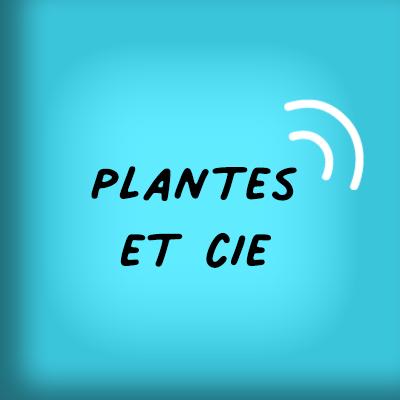 Emission du végétal éco-logique ! Nathalie Avenel reçoit un spécialiste pour parler des plantes locales et leurs usages.